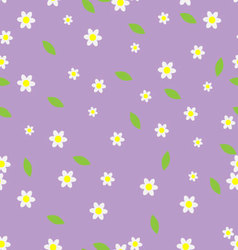 Seamless flower pattern camomile vector