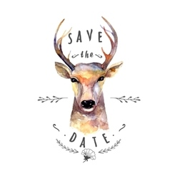 Deer watercolor Save the date vector image vector image