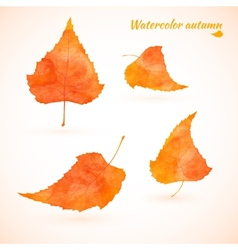 watercolor set of autumn leaves vector image