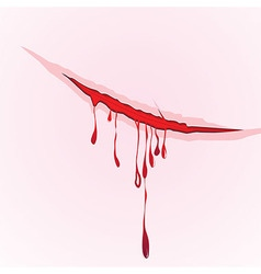Claws scratch blood drops background vector image