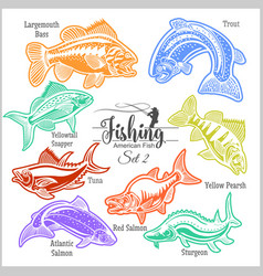 american fish - set 2 for creative design vector image