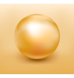 Golden pearl vector