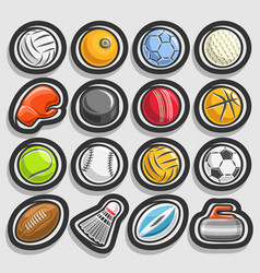 set sports balls vector image