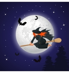 silhouette a witch flying on a broomstick vector image