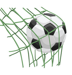 soccer ball on net vector image