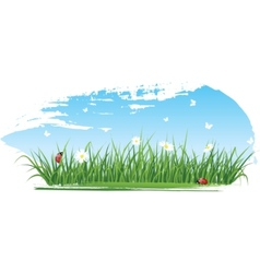 summer grass banners vector image