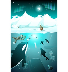 Underwater arctic life in a cold arctic night vector