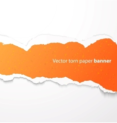 Torn paper banner vector image vector image