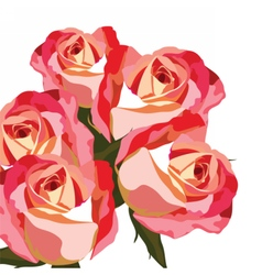 Watercolor Red rose flower vector image vector image