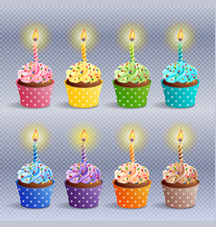 Birthday cupcakes icons vector