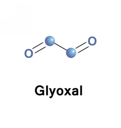 Glyoxal smallest dialdehyde vector