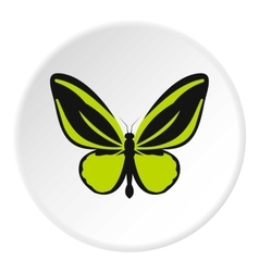 Green butterfly icon flat style vector image