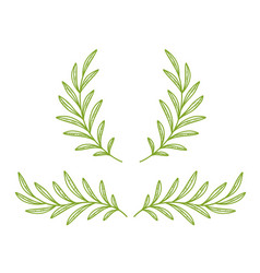 green hand drawn olive branches and wreath vector image