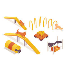 Isometric collection dogs training on pet vector