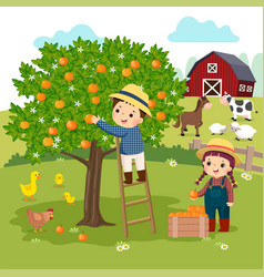 Ittle boy and little girl picking oranges vector