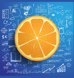 business doodle concept with fresh orange and vector image