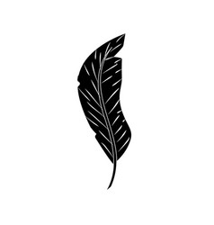 Contour beauty feather style with decoration vector