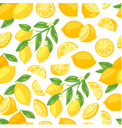 lemons fresh fruits and flowers blossom floral vector image