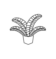 Potted palm leaves plants line style icon vector