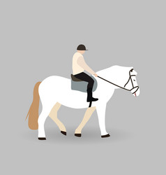 Rider on white horse vector