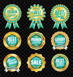 set excellent quality turquoise badges vector image