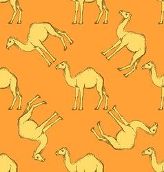 Sketch cute camel in vintage style vector image vector image
