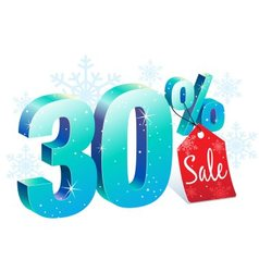 Winter Sale 30 Percent Off vector image