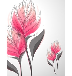 vriesea - beautiful pink flower vector image vector image