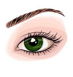 woman green beautiful eye vector image vector image