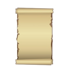 Old ancient papyrus parchment scroll vector