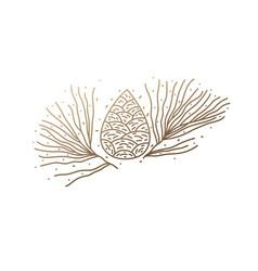 pinecone logo design vector image