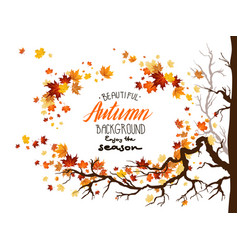 Seasonal image with leaves vector