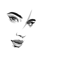 the girls face is close-up eyes lips nose vector image