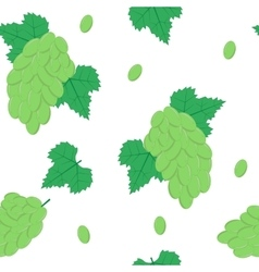 Seamless Pattern with White Grapes on White vector image