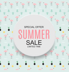 colored summer sale concept background vector image