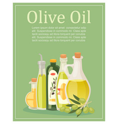 olive oil glass pitchers bottles and jugs with vector image
