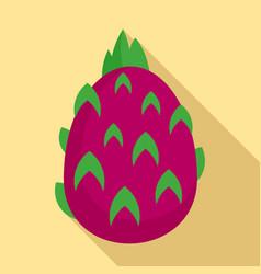 pitaya fruit icon flat style vector image