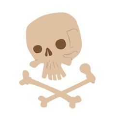 Skull bones isolated on white vector image