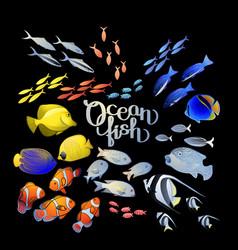 graphic ocean fish vector image vector image