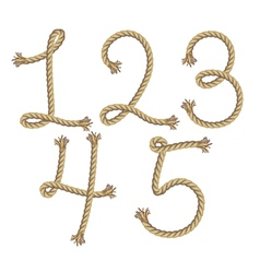 Rope number alphabet vector image vector image