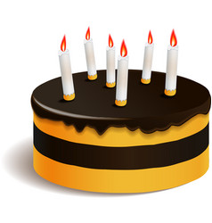 Big layered cake for celebration vector