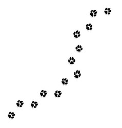cat or dog paw print pets or animals paw trail vector image