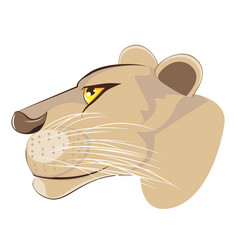 Cute lioness head vector