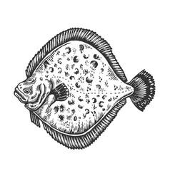 European fish animal engraving vector