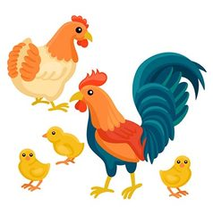 Adult hen and rooster with tree chickens vector image