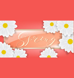 bouquet of white daisy or gerber flowers vector image vector image