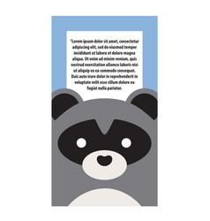 animal cover raccoon and text vector image