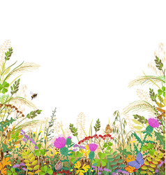 colorful frame with autumn meadow plants and vector image