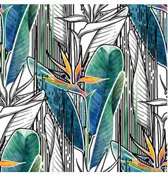 combined strelitzia pattern vector image