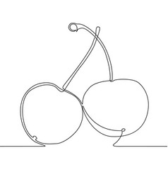 continuous one line drawing cherry berry vector image